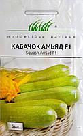 Семена кабачков Амьяд F1 5 шт, Seminis