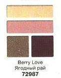 """Тени для век """"Чудесный квартет"""" Avon True, цвет Berry Love, Ягідний рай , Эйвон, 4-х цветная палитра"""