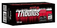 Трибулус TRIBUACTIV B6 90 капсул (банка)