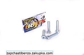 Болты крышки вариатора   Suzuki LETS   шестигранный шлиц 4шт