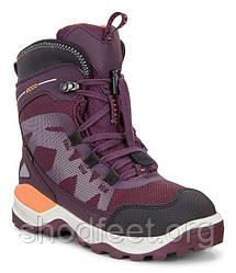 Детские ботинки Ecco Snow Mountain Gore-Tex 710202-50745