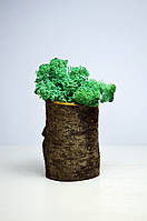 Сувенир Бревнышко со мхом от Студии Зеленка