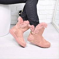 Угги женские SPORT пудра 3773, зимняя обувь