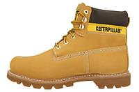 Мужские ботинки CAT Caterpillar COLORADO Зима