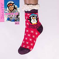Тёплые детские домашние носки с тормозами Золото HD6010-5 28-31