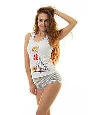 Набор женского нижнего белья ТМ INDENA Арт.37017, фото 2