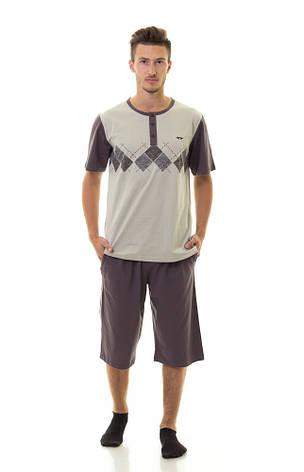 Мужской комплект (футболка + шорты) TM INDENA Арт.33003, фото 2