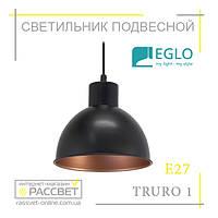 Подвесной светильник (люстра) Eglo 49238 TRURO 1, фото 1