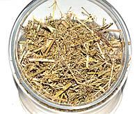 Подмаренник настоящий трава (подмаренник желтый), фото 1