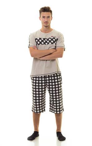 Мужской комплект (футболка + шорты) TM INDENA Арт.48005, фото 2