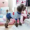 Платье для собаки Морячка-Синий-M