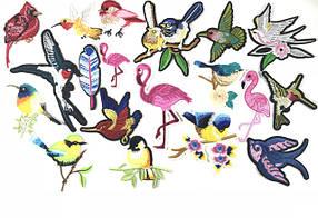 Нашивки Птицы