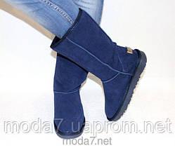 Замшевые женские угги UGG IT TS синие, фото 3