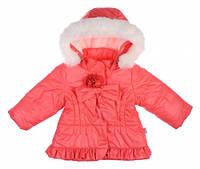 Куртка для девочек,  коллекция Гномик, коралловый,Garden baby