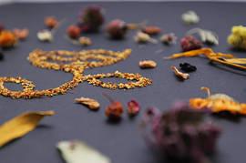 Лечебные смолы, пыльца и грибы