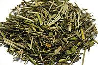 Вербена лекарственная трава, фото 1