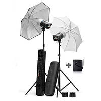 Набор студийного света для фотосъемки Elinchrom D-Lite 2/4 RX 200/400