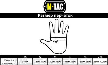 M-TAC ПЕРЧАТКИ ЗИМНИЕ POLAR TACTICAL THINSULATE OLIVE, фото 3