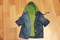 Одежда для кота и собачки  Джинсовый пиджак с капюшоном все размеры