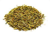 Горец птичий трава (спорыш, гусятник), фото 1