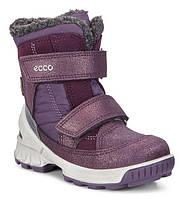 Детские зимние ботинки Ecco Biom Hike Infant 753581-50623