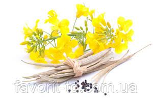 Семена озимого рапса по ценам ниже рыночных - 17000грн/т