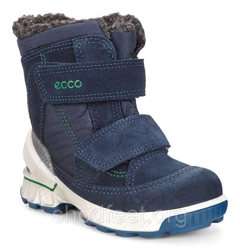 Детские зимние ботинки Ecco Biom Hike Infant 753581-50595