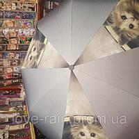 Женский зонт AMICO(полуавтомат)