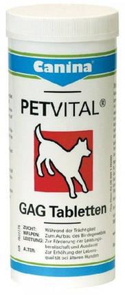 Витамины для собак.Суставная патология CANINA Petvital GAG 180 т (Арт. - 723317), фото 2