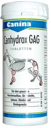 Canina Petvital Canhydrox GAG (GAG FORTE) 60 т (Арт. - 123490), фото 2