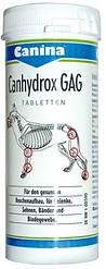 Canina Petvital Canhydrox GAG (GAG FORTE) 360 т(123537)