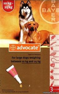Advocate (Адвокат) капли для собак весом от 10 до 25 кг, фото 2