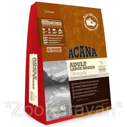 Сухой корм для собак крупных пород ACANA ADULT LARGE BREED 11,4 кг, фото 2