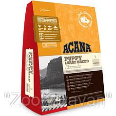 Сухой корм для щенков крупных пород ACANA PUPPY LARGE BREED 17 кг