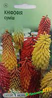 """Семена цветов Книфофия ягодная, многолетнее, 0.2 г, """"Елітсортнасіння"""", Украина."""