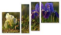 Модульная картина цветы в траве 3д