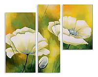 Модульная картина белые цветы рисунок 3д