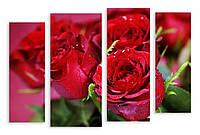 Модульная картина капли на красных розах