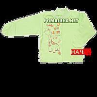 Детская кофточка р. 62 с начесом и царапками демисезонная ткань ФУТЕР 100% хлопок ТМ Алекс 3222 Зеленый В