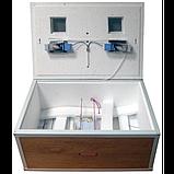 Инкубатор Курочка Ряба 100 яиц с механическим переворотом и аналоговым терморегулятором, фото 2