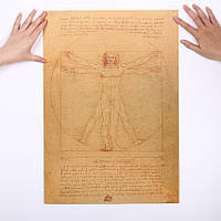 Постер Леонардо да Винчи Витрувианский человек,51см *36см