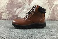Мужские Ботинки Timberland Brown Boots 10066