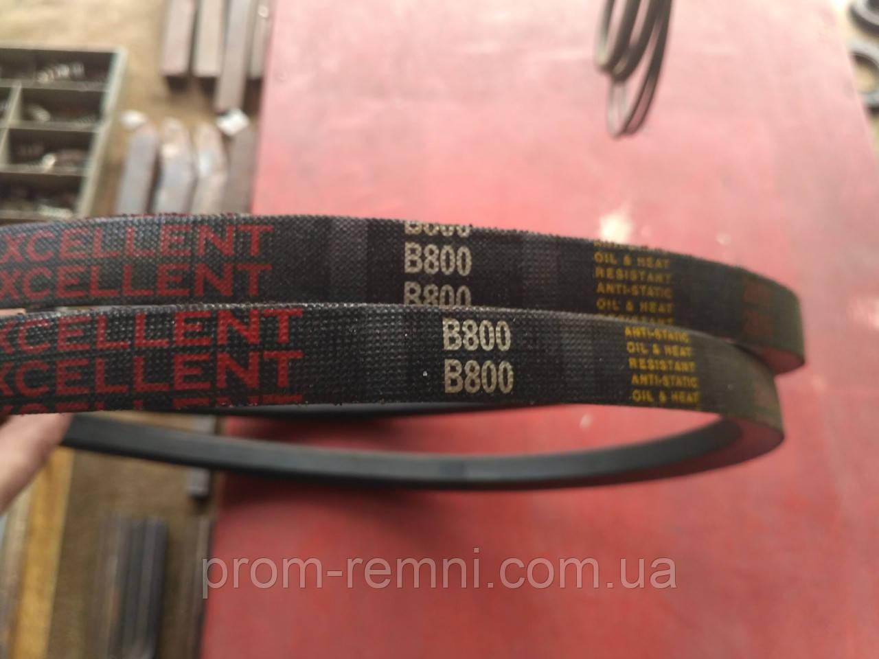 Приводний ремінь 800 мм, B(Б)-800 Excellent