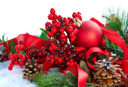 Три интересных факта о новогодней ёлке