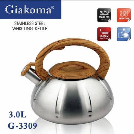 Чайник из нержавеющей стали со свистком Giakoma 3,0 л, фото 2