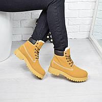 Ботинки женские Timber рыжие Зима 3782, ботинки женские