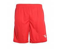 Шорты Diadora Houston Shorts (1233012/45030)