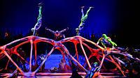 Детские мечты сбываются – получите в подарок билет на шоу Цирка дю Солей!