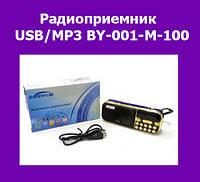 Радиоприемник USB/MP3 BY-001-M-100