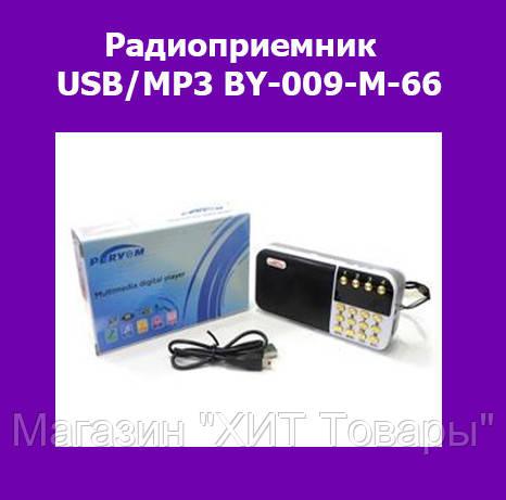Радиоприемник USB/MP3 BY-009-M-66, фото 2